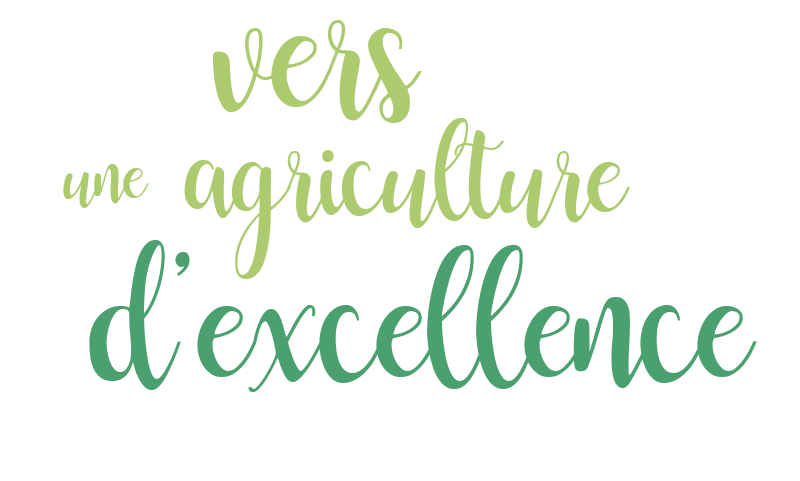 Vers une agriculture d'excellence